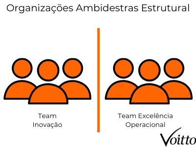 Organizações ambidestras estrutural
