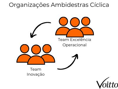 Organizações ambidestras cíclica