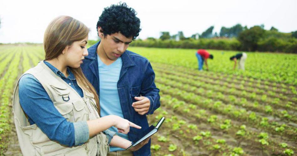 Engenharia Agrícola: o que é, o que faz e quanto ganha?