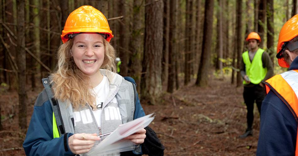 Engenharia Florestal: o que é, o que faz e quanto ganha?