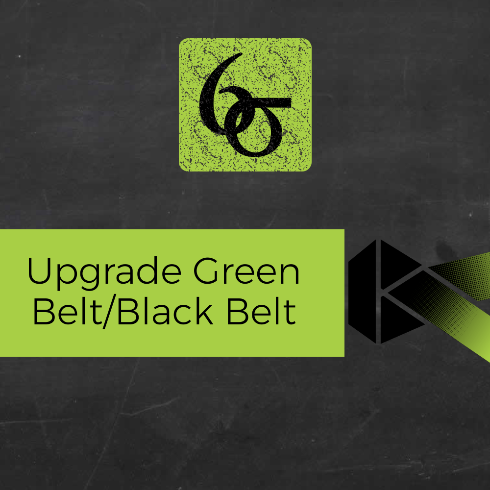 Upgrade para Black Belts em Lean Seis Sigma - 20h