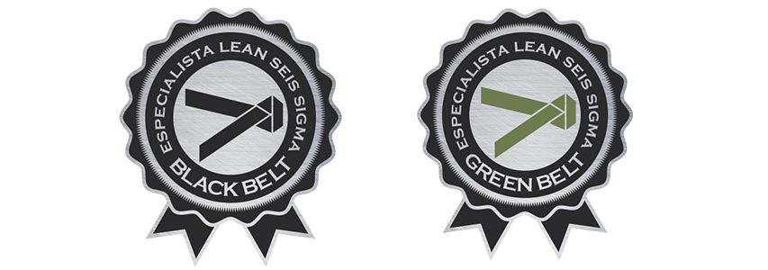 Especialista Lean Seis Sigma Green Belt ou Especialista Lean Seis Sigma Black Belt